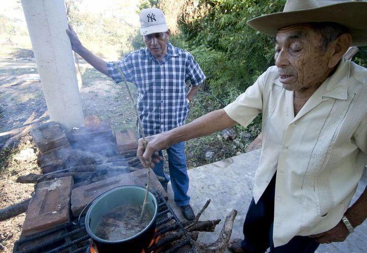 El Instituto para el Desarrollo de la Cultura Maya busca fomentar la preservación de la herbolaria maya. (Imagen estrictamente referencial/Archivo/Notimex)