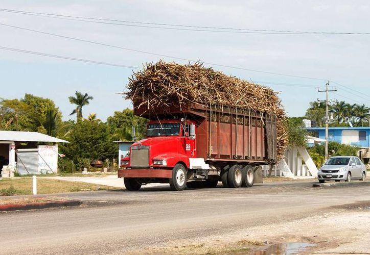 Los camiones que transportan la caña serán revisados para posteriormente darles mantenimiento. (Edgardo Rodríguez/SIPSE)