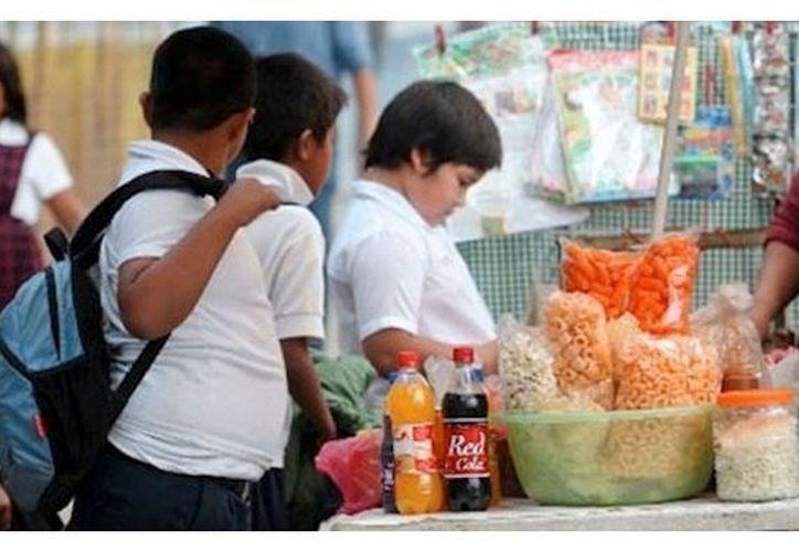 Desde temprana edad se debe de comer de forma sana y proporcionada. (Foto: Milenio Novedades)