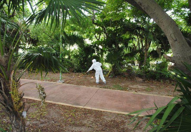 El sujeto asesinado en la zona hotelera estaba hospedado en un hotel de este destino turístico. (Redacción/SIPSE)