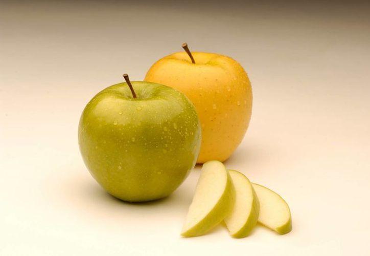Actualmente, las manzanas tienen que ser rociadas con antioxidantes para evitar que se descompongan, pero ese proceso afecta su sabor. (AP)
