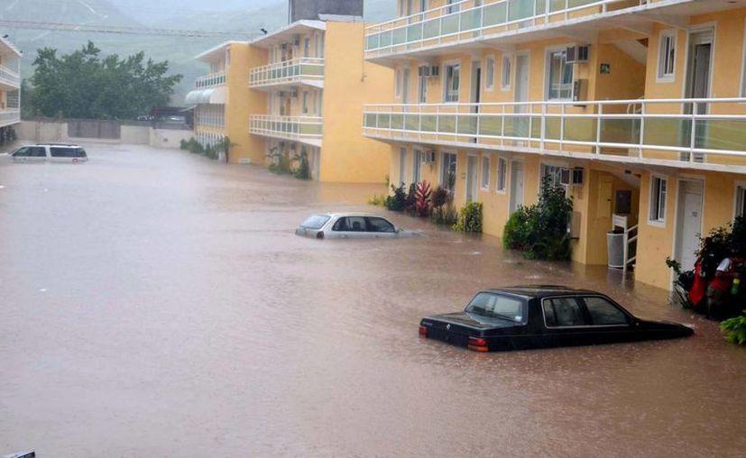 La inundación comienza a despedir olores pestilentes. (Notimex)