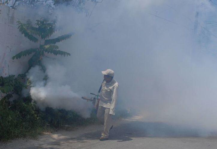 Personal de Sesa refuerza el programa de nebulización. (Gustavo Villegas/SIPSE)