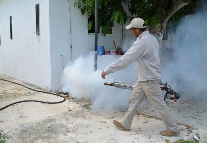 Secretaría Estatal de Salud, dispone de 500 trabajadores y 89 vehículos para nebulizar. (Harold Alcocer/SIPSE)
