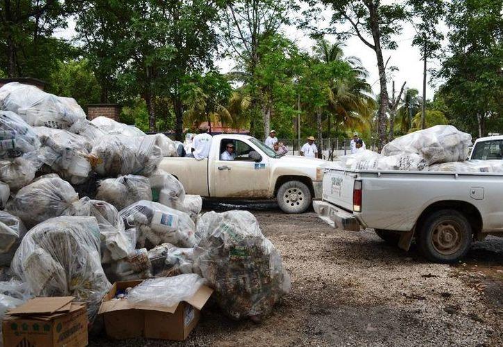 El objetivo de la campaña es mantener las parcelas libres de contenedores de agroquímicos. (Edgardo Rodríguez/SIPSE)