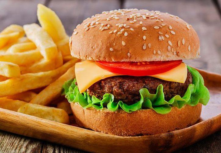 En Suiza se podrán adquirir albóndigas y hamburguesas de insectos en algunos supermercados. (Contexto/Internet).