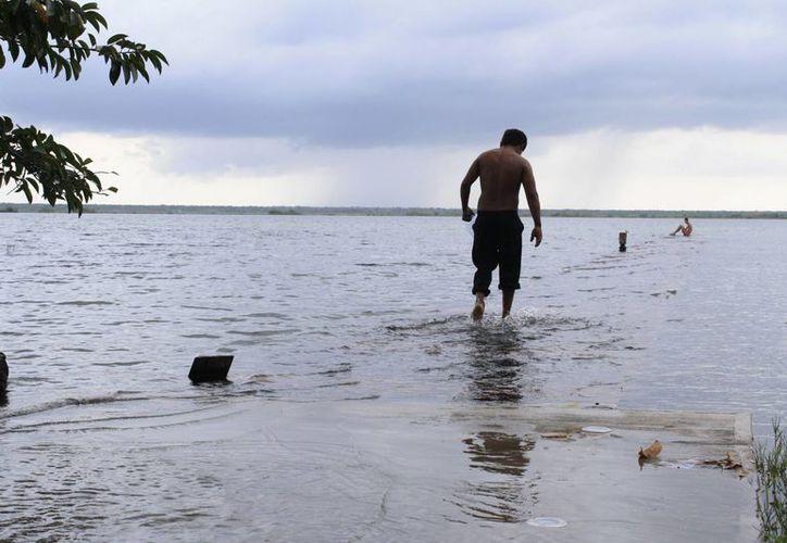 Existe especial atención en los cuerpos lagunares de Subteniente López, Laguna Guerrero y Bacalar. (Harold Alcocer/SIPSE)