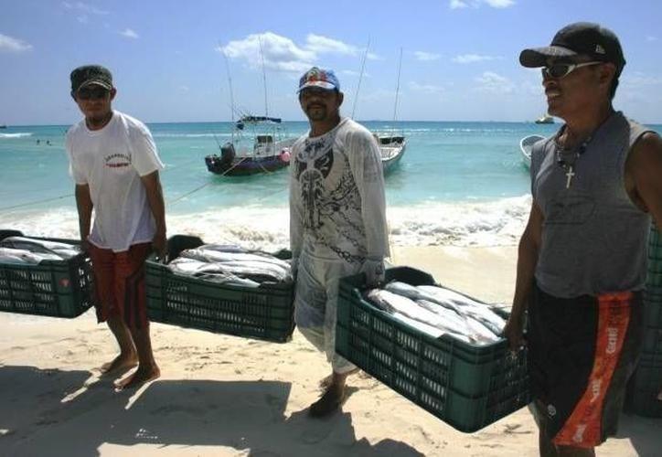 En el Estado los casos de pesca furtiva se presentan durante todo el año, poniendo en riesgo al sector. (Milenio Novedades)