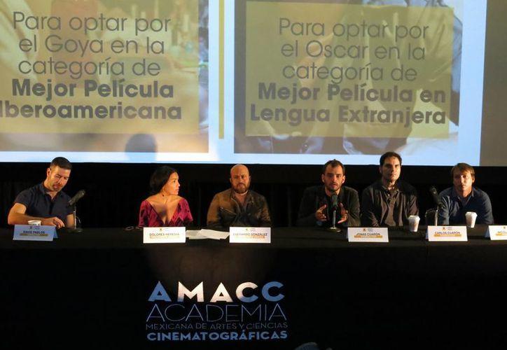 México enviará la película 'Desierto', de Jonás Cuarón, a competir por el Oscar, y 'Las elegidas', por el Goya. (AP)