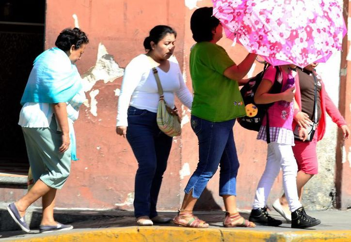 El domingo se registró una temperatura de casi 37 grados en Mérida. (Daniel Sandoval/Milenio Novedades)