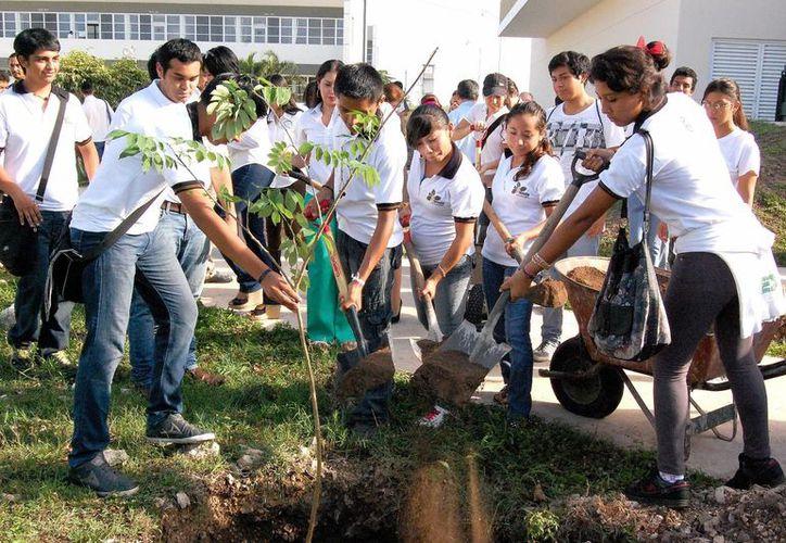 Entre las actividades que realizan los voluntarios ambientales de la Uady destacan las intervenciones denominadas 'Yax Balam'. (SIPSE)