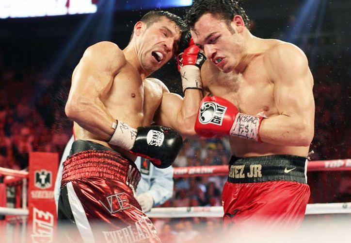 Martínez (i)  recuperó el título de peso medio al vencer a Chávez Jr el pasado 15 de septiembre en Las Vegas. (Zanfer.com.mx)
