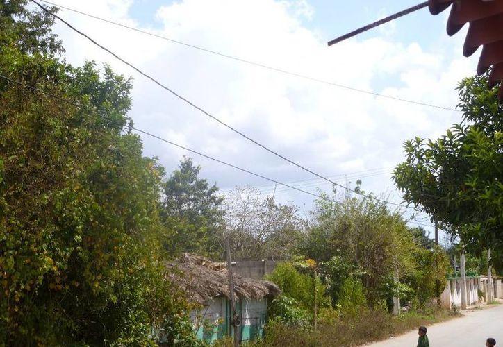 Se verificaron varias zonas de la colonia CAPA y no encontraron algo sospechoso. (Raúl Balam/SIPSE)