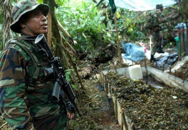 Chile es unas de las rutas de la cocaína boliviana pero gran parte de la droga sale a Brasil. (Archivo/EFE)