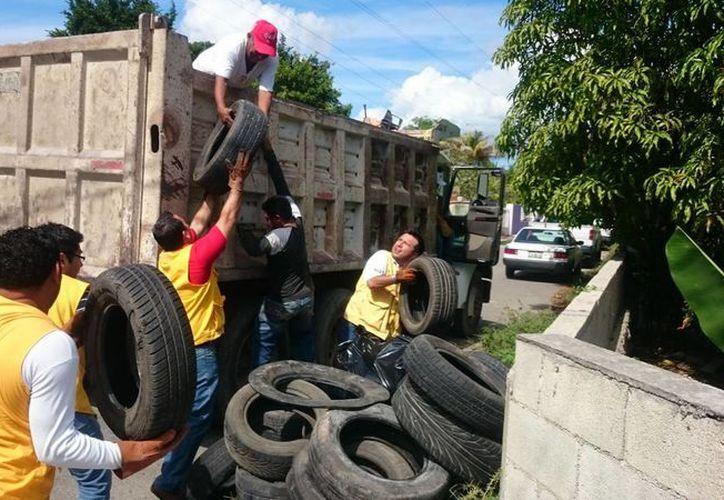 Los trabajos de descacharrización en esta ocasión beneficiaron a 193 mil pobladores de 43 comisarías y colonias aledañas al periférico de Mérida. (SIPSE)