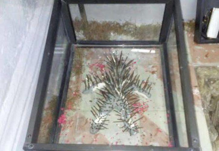 """El muñeco de vudú """"Iku"""" puede observarse en el Museo Paranormal. (Jorge Moreno/SIPSE)"""