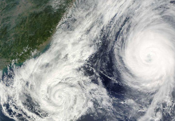 Cuando dos ciclones se acercan el uno al otro, uno girará alrededor del otro en sentido contrario a las agujas del reloj. (Contexto)