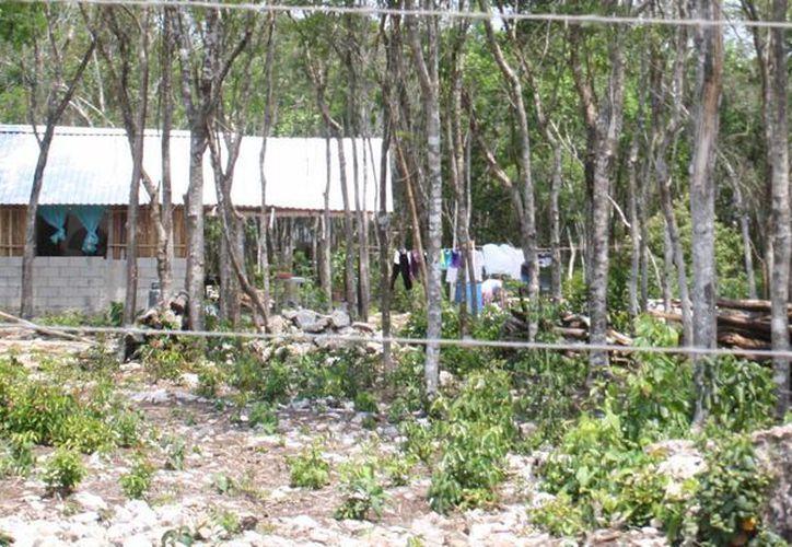 Ayer un grupo de 150 personas inició la construcción de palapas en un predio que presuntamente pertenece a integrantes de la religión Testigos de Jehová.  (Octavio Martínez/SIPSE)