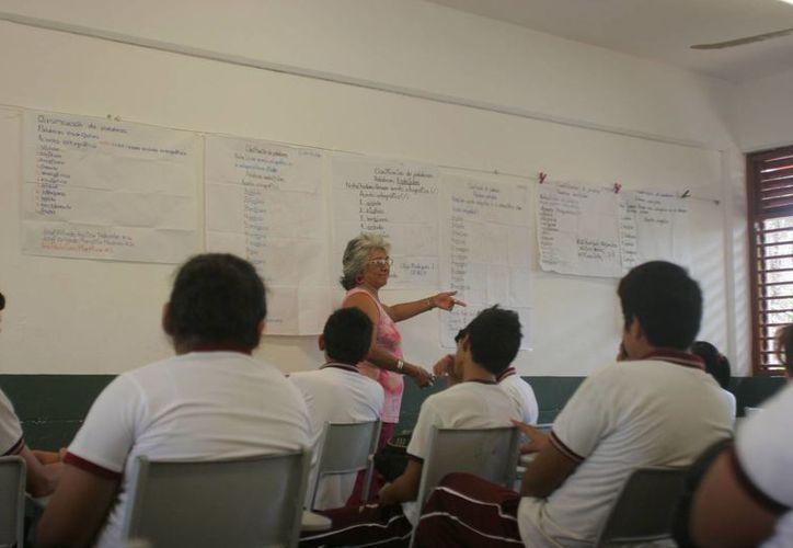 Los maestros que aprobaron el examen oposición recibieron una plaza docente en Quintana Roo. (Cortesía)