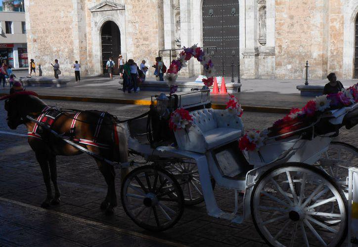 """Yucatán ya espera a los turistas con nuevos atractivos. Esta mañana se presentó la segunda etapa del programa """"Redescubre Yucatán"""". La imagen, tomada en Mérida, está utilizada solo con fines ilustrativos. (SIPSE)"""