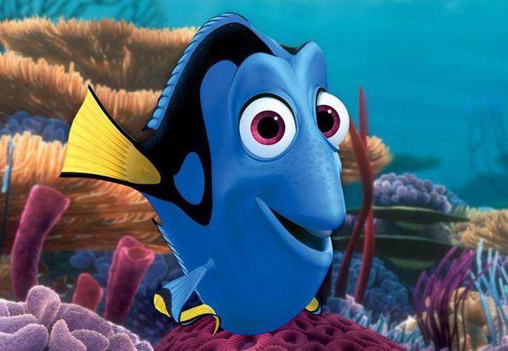 "Dolphin Discovery dará a conocer sus trabajo de investigación ligada a la película ""Buscando a Dory"". (Contexto/Internet)"