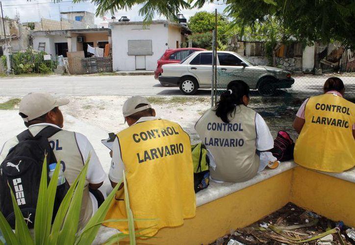 Anuncian programas de prevención del dengue. (Sergio Orozco/SIPSE)