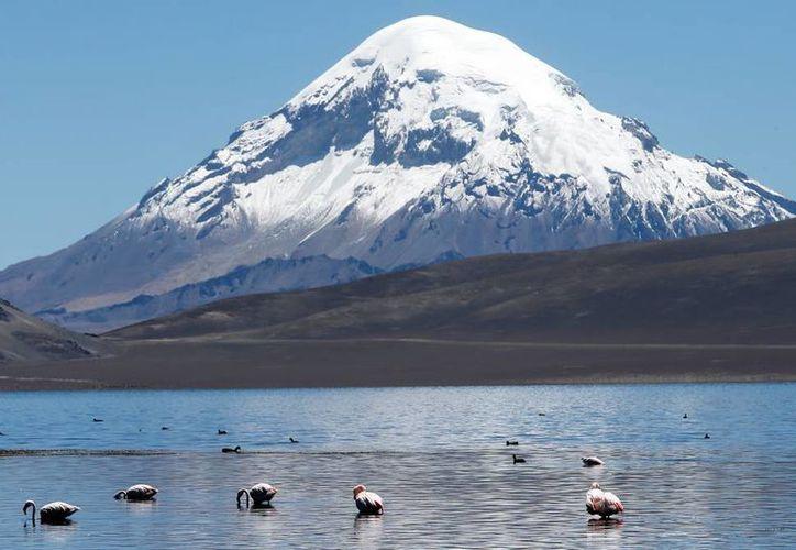 Fotografía del 16 de noviembre de 2015, en el lago Chungará, a cuatro mil 500 metros de altitud, en la región de Arica, localidad distante a 2.000 km. al norte de Santiago. (EFE)