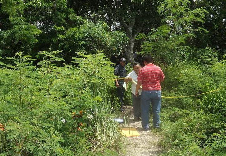 Elementos ministeriales examinan el área donde fue hallado el cuerpo del ex alcalde de Chikindzonot. (Milenio Novedades)