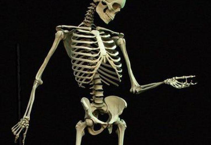 Una agencia fúnebre se contactó con una sede del CTS de Roma para emitir un pasaje de avión para transportar un esqueleto.(blogspot.mx)