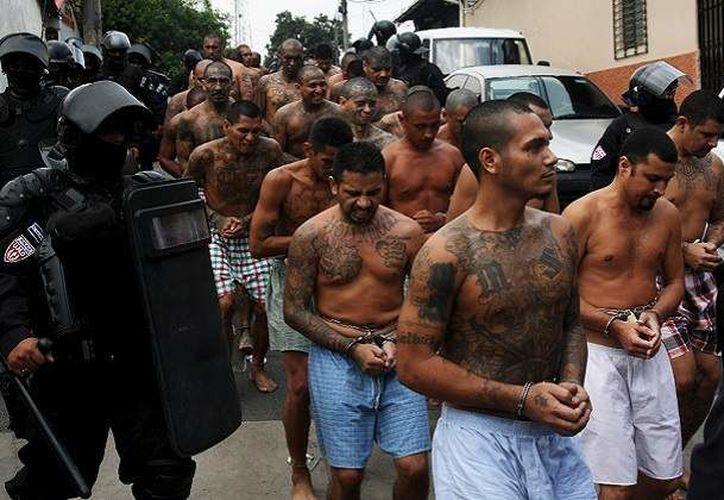 El arresto de los 214 integrantes de la Mara Salvatrucha ocurrió entre el 8 de octubre y el 11 de noviembre. (Foto: Economía Hoy)