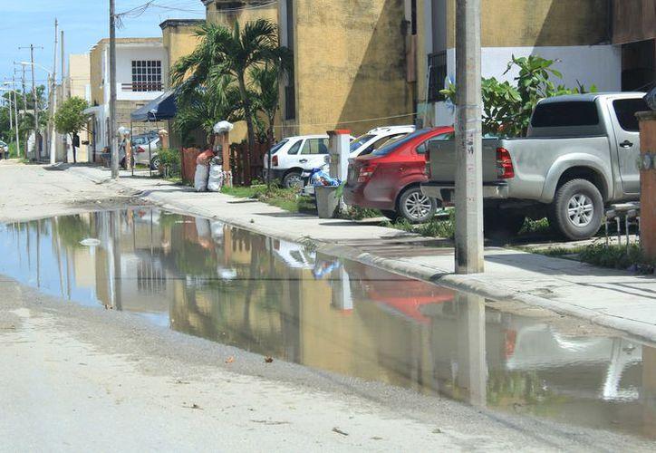 El fraccionamiento lleva al menos 10 años desde que se entregó a los habitantes. (Luis Soto/ SIPSE)