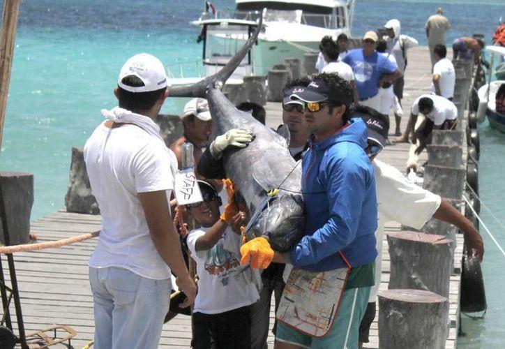 La pesca deportiva recreativa está sujeta a los límites máximos de captura. En la foto pescadores llegan a tierra con su captura. (Milenio Novedades)