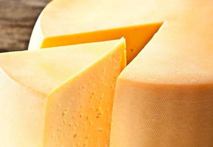 El queso que fue encontrado está infectado con una bacteria tan mortal como una maldición egipcia. (Internet/Contexto)