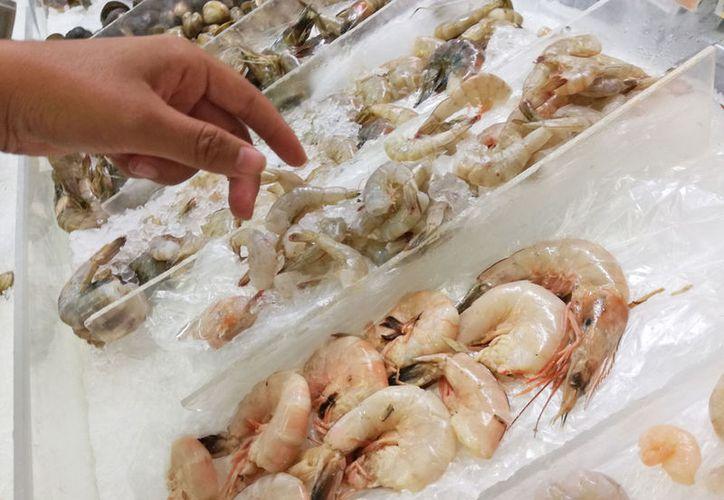 Para los distribuidores que tengan camarón congelado cuando inicie la veda deberán hacer un inventario de la especie para presentarlo a la Sagarpa. (Ivett Ycos/SIPSE)
