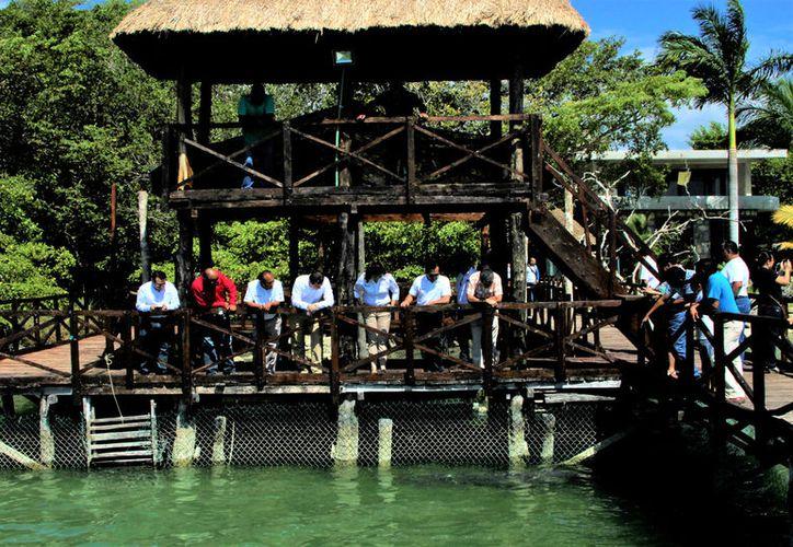 Hasta la fecha, el ayuntamiento capitalino sólo ha hecho acciones de educación ambiental y limpieza de una fracción de la bahía.