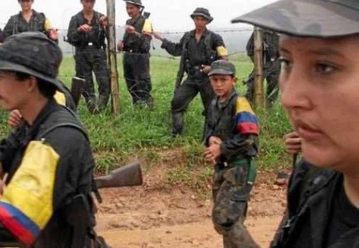 La ONU instó a la organización guerrillera a respetar la integridad personal y la autonomía de los pueblos indígenas. (www.portalvallenato.net)