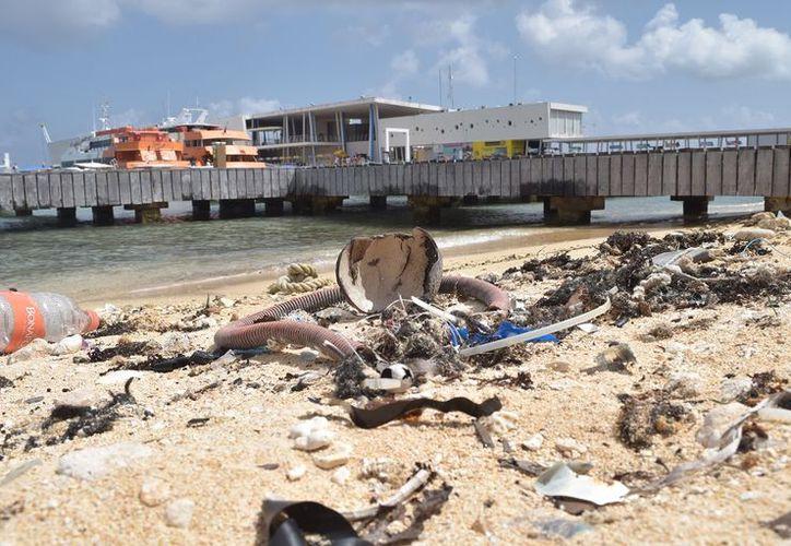 Basura, principalmente plástico en pequeños fragmentos, se pueden encontrar en la pequeña playa frente al atracadero del muelle San Miguel. (foto: Gustavo Villegas)