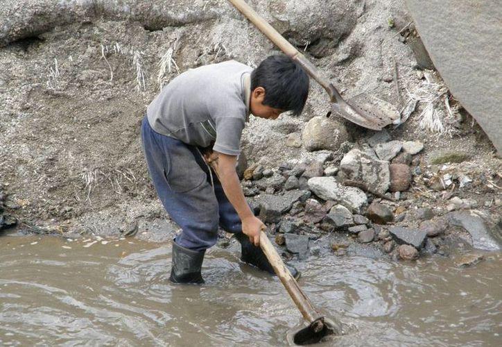 Diputados aprobaron que la edad mínima para que los menores tenga un trabajo y perciban un salario sea de 15 años, es decir, la aumentaron un año. (Foto de contexto/m-mx.com.mx)