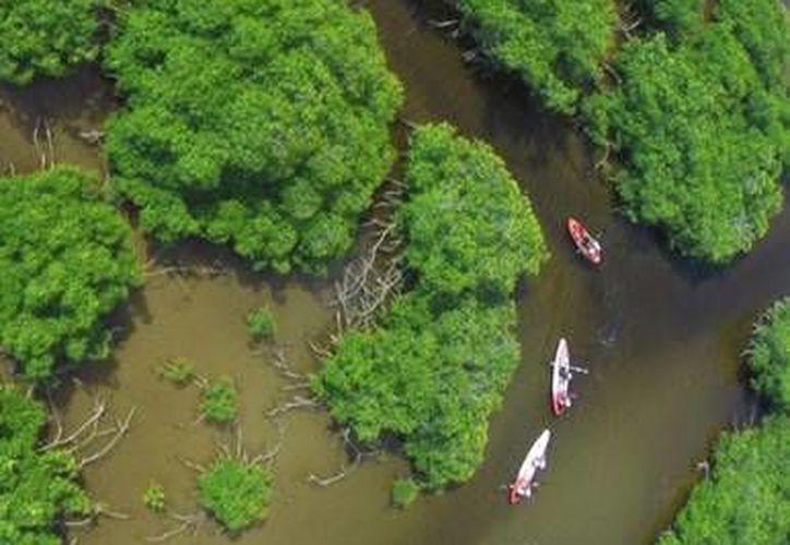 La marca Mayakan impulsa el ecoturismo en comunidades de la zona maya de Quintana Roo. (Cortesía/Mayakan.travel)