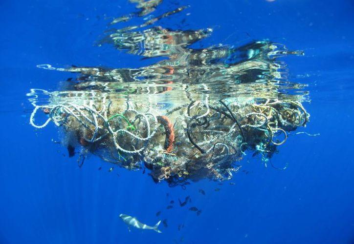 Estos residuos duran hasta 400 años en degradarse, es decir, es el tiempo estimado que contaminarán y dañarán  a miles de especies en el mar. (Foto de Contexto/ecoosfera.com)