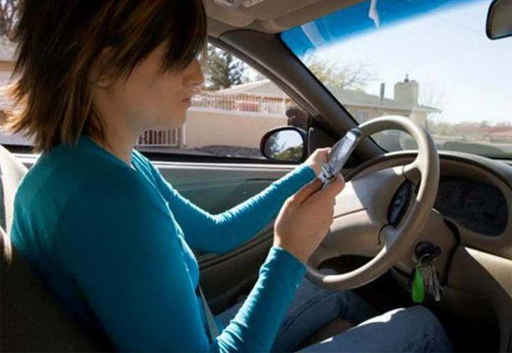 Para evitar accidentes fatales, evite usar el teléfono celular mientas maneja. (excélsior.com.mx)