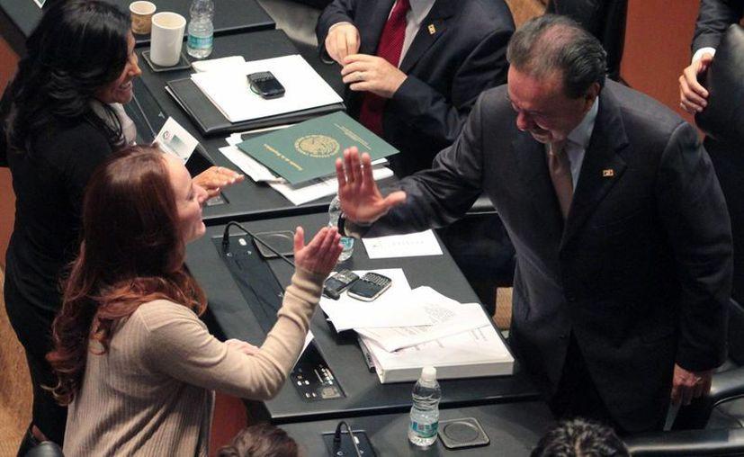 La asamblea del Senado modificó 14 artículos y devolvió el proyecto a la Cámara de Diputados. (Notimex)