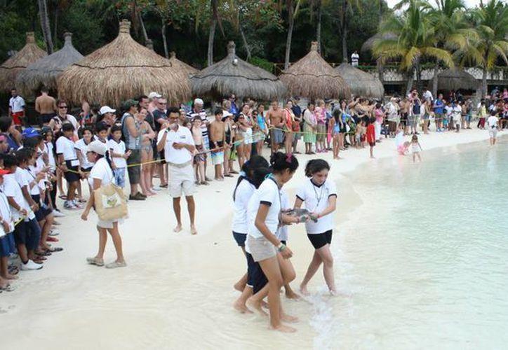 Personas que acudieron a divertirse en el parque presenciar la liberación de las tortugas. (Alida Martínez/SIPSE)