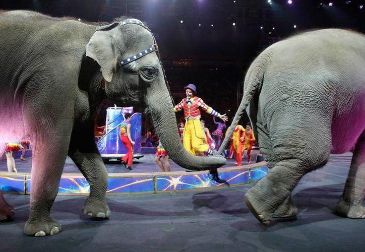 El circo Ringling Bros. and Barnum & Bailey realizó su último espectáculo con elefantes. (AP)