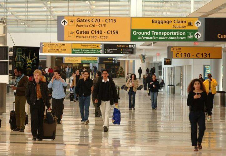 Terminal C3 de Continental Airlines en el Aeropuerto Newark Liberty International, donde se realizó el decomiso. (Foto:www.canalpluspr.com)