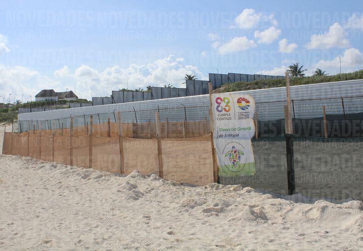 Gran Solaris Cancún contará con 449 habitaciones y una suite, en un predio al lado de Playa Delfines. (Foto: Ivett Y Cos)
