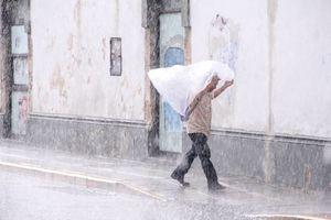 Fotos de la tormenta vespertina en Mérida, con granizo incluido