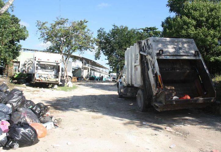 Cada camión trabaja dos turnos y retira 16 toneladas de basura, que en conjunto suman 96 al día. (Sara Cauich/SIPSE)