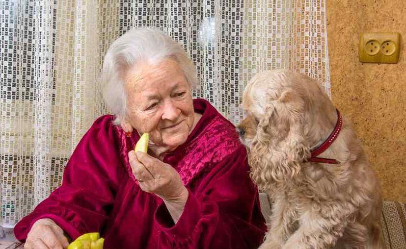 El riesgo de muerte de quienes fueron hospitalizados por problemas del corazón y viven solo con su perro disminuye un 33 por ciento. (Foto: contexto Internet)