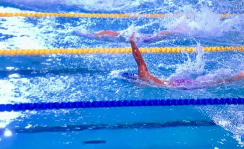 """Las competencias se realizaron en la Alberca Olímpica """"Francisco Márquez"""". (bcsnoticias.mx)"""
